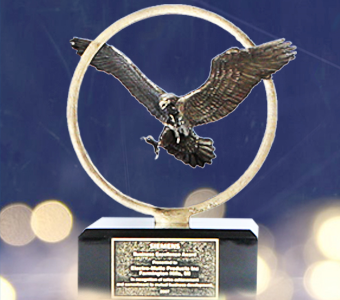 EM-Products-siemens-eagle-awards